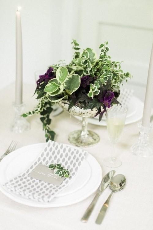 растения в хрустальной вазе